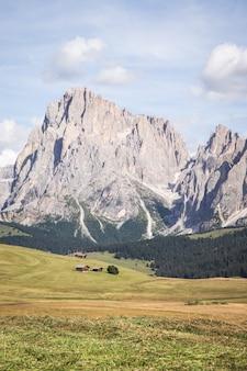 Verticaal schot van seiser alm - alpe di siusi met breed weiland in compatsch italië