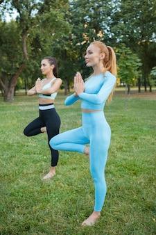Verticaal schot van twee vriendinnen die genieten van yoga buiten in de zomer