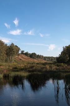 Verticaal schot van water omgeven door een bos onder een blauwe hemel