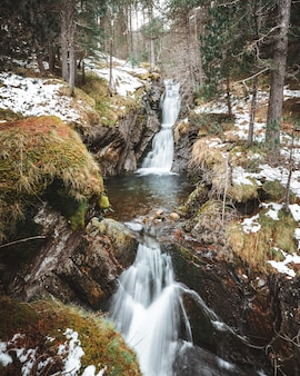 Verticaal schot van watervalcascades in het midden van het bos in de winter
