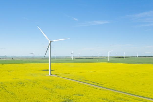 Verticaal schot van windgeneratoren in een groot veld overdag