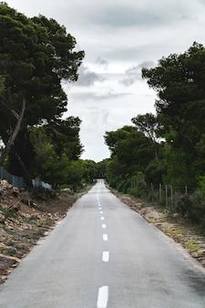 Verticaal shot van een eindeloze weg midden in een bos