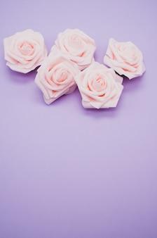 Verticale close-up shot van roze rozen geïsoleerd op een paarse achtergrond met kopie ruimte