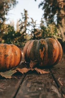 Verticale close-up van pompoenen en herfstbladeren op een tafel in het bos