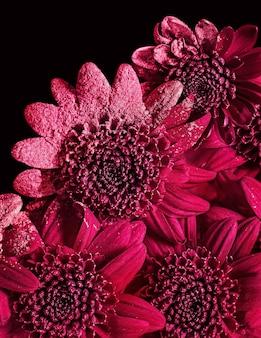 Verticale close-up van rode bloemen met poeder op hen