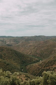 Verticale hoge hoek shot van een reeks bergen met groene bomen onder de bewolkte hemel