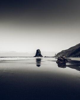 Verticale opname in grijstinten van de rotsen aan de kust van de zee