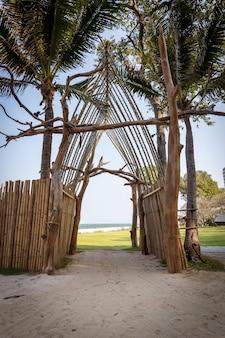 Verticale opname van de palmbomen op het zandstrand, vastgelegd in thailand
