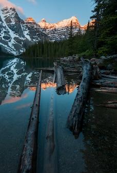 Verticale opname van de stukken hout in het meer met reflecties van de bergen in het moraine-meer