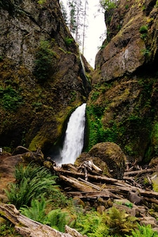 Verticale opname van de waterval wahclella falls in de vs.