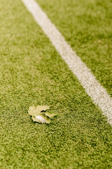 Verticale opname van een gevallen blad op een voetbalgazon met witte aftekeningen
