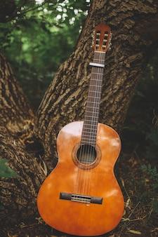 Verticale opname van een gitaar die op de stam van een boom in het midden van een bos leunt