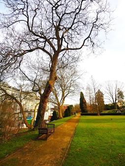 Verticale opname van een houten bankje omgeven door de bomen van het park