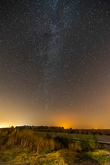 Verticale opname van een lege weg omgeven door groen onder een sterrenhemel