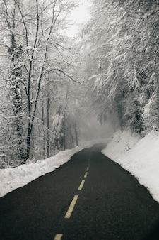 Verticale opname van een mooie lege weg omgeven door besneeuwde bossen
