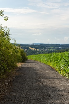 Verticale opname van een onverharde weg die door de planten en een prachtige boerderij gaat