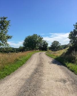 Verticale opname van een onverharde weg in het midden van grasvelden en bomen in zweden