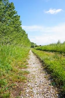 Verticale opname van een onverharde weg met bomen en grasveld aan de zijkanten