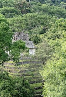 Verticale opname van een oud gebouw, omringd door bomen en gras overdag