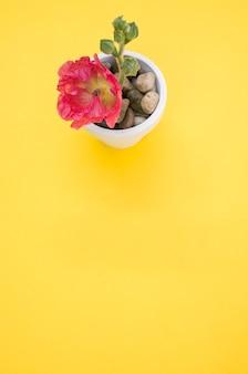 Verticale opname van een roze anjerbloem in een kleine bloempot, geplaatst op een geel oppervlak