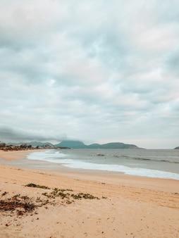 Verticale opname van een strand omgeven door de zee onder een bewolkte hemel in rio de janeiro, brazilië