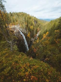 Verticale opname van een waterval omringd door veel bomen met herfstkleuren in noorwegen