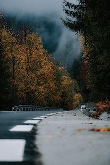Verticale opname van een weg en kleurrijke bomen in een herfstbos
