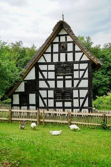 Verticale opname van het kommern openluchtmuseum in mechernich, duitsland