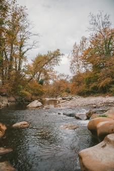 Verticale opname van veel rotsen in een rivier, omringd door prachtige bomen onder de onweerswolken