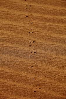 Verticale opname van voetafdrukken op zandduinen in xijiang, china