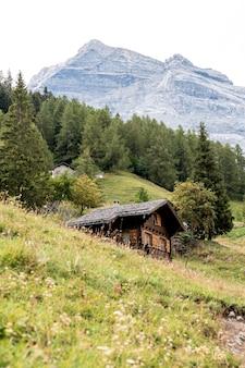 Verticale opname van zwitserse alpen