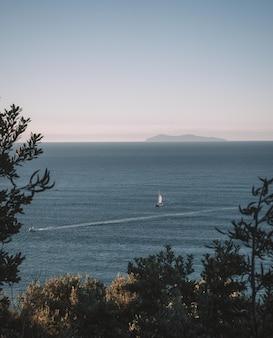 Verticale shot van bomen in de buurt van de zee met boten en een heldere hemel