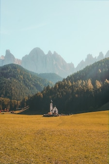 Verticale shot van een prachtig gebouw op een droge grasveld omgeven door beboste bergen