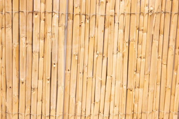 Verticale streep houtstructuur achtergrond. hoge kwaliteit foto