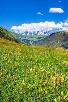 Verticale weergave van franse alpen in de zomer