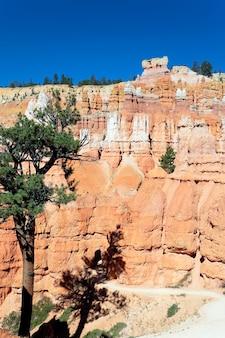 Verticale weergave van navajo trail in bryce canyon, utah