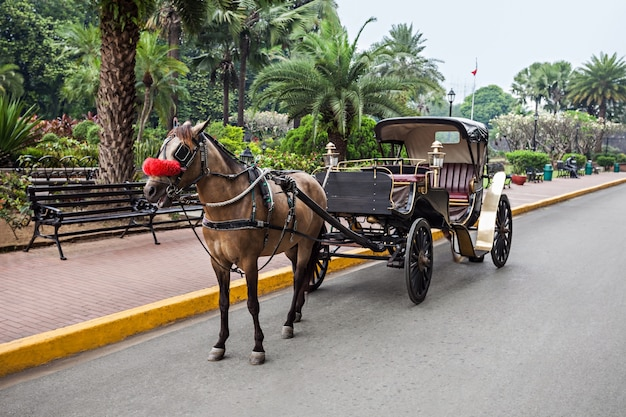 Vervoer in intramuros