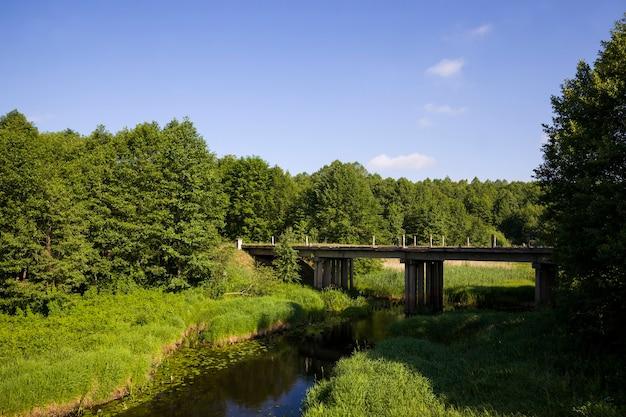 Vervuild water in een meer of rivier in de zomer of lente seizoen dieren in het wild