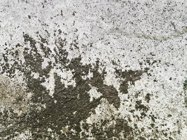 Verweerde betonnen muur textuur met zwarte korstmossen
