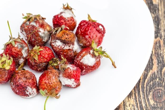 Verwende rode aardbeien bedekt met schimmel en rot, beschimmelde rottende rode aardbeien