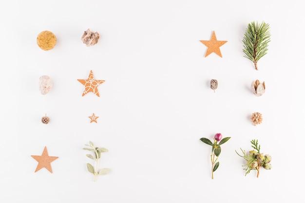 Verzameling van planten en decoraties