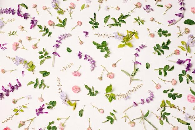 Verzameling van roze en violet bloemen en groene bladeren