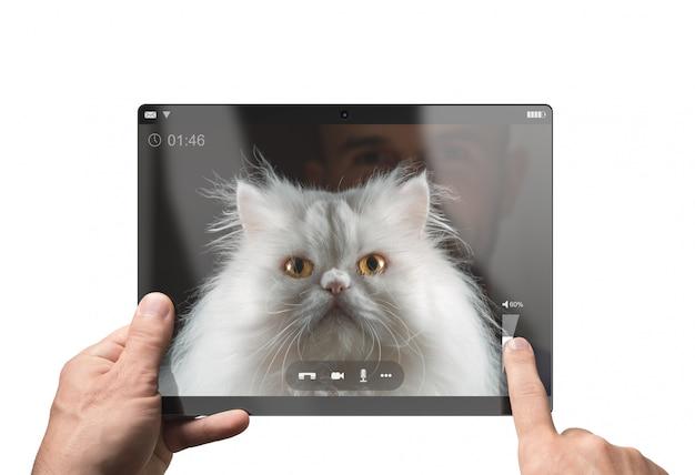 Videochat met een grappige witte perzische kat. geïsoleerd