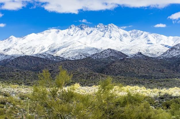 Vier toppen in de sneeuw