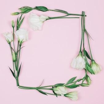 Vierkant kader dat met mooie verse witte eustomabloemen wordt gemaakt tegen roze achtergrond
