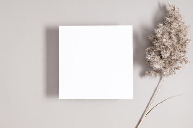 Vierkant uitnodigingskaartmodel met gedroogd gras op grijze achtergrond plat lag bovenaanzicht kopieerruimte