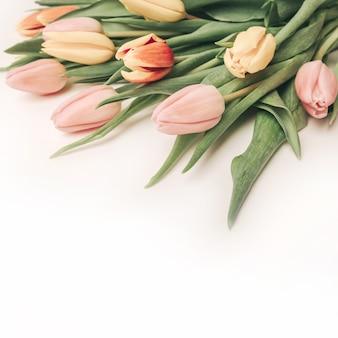 Vierkante achtergrond met een boeket tulpen op een oranje achtergrond