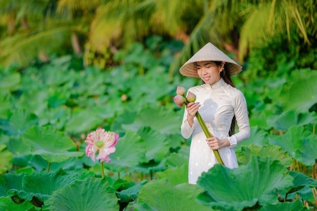 Vietnamese vrouwen verzamelen de lotus bij zonsondergang.