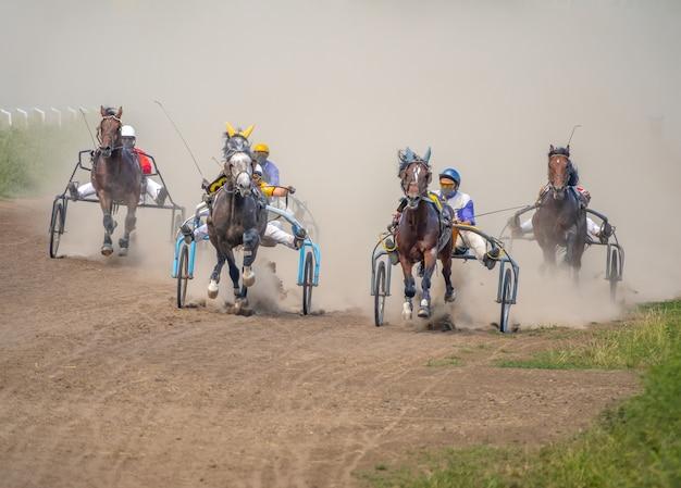 Vijf paarden strijden op een zomerse dag in harnasraces