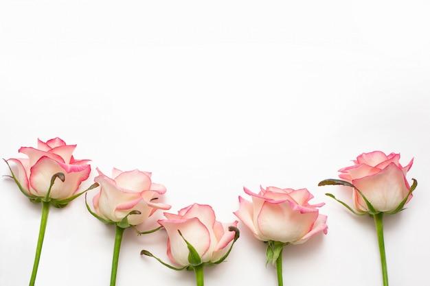 Vijf roze rozen, prachtige verse rozen.